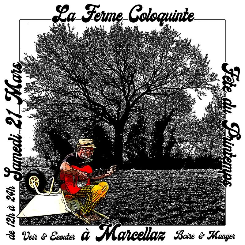 Fête du printemps Coloquinte